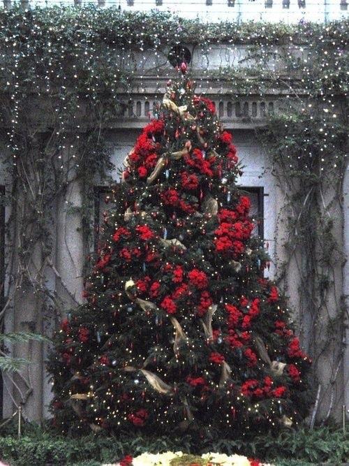 In Diesem Sinne Frohe Weihnachten.Frohe Weihnachten Platzhirsch Cc